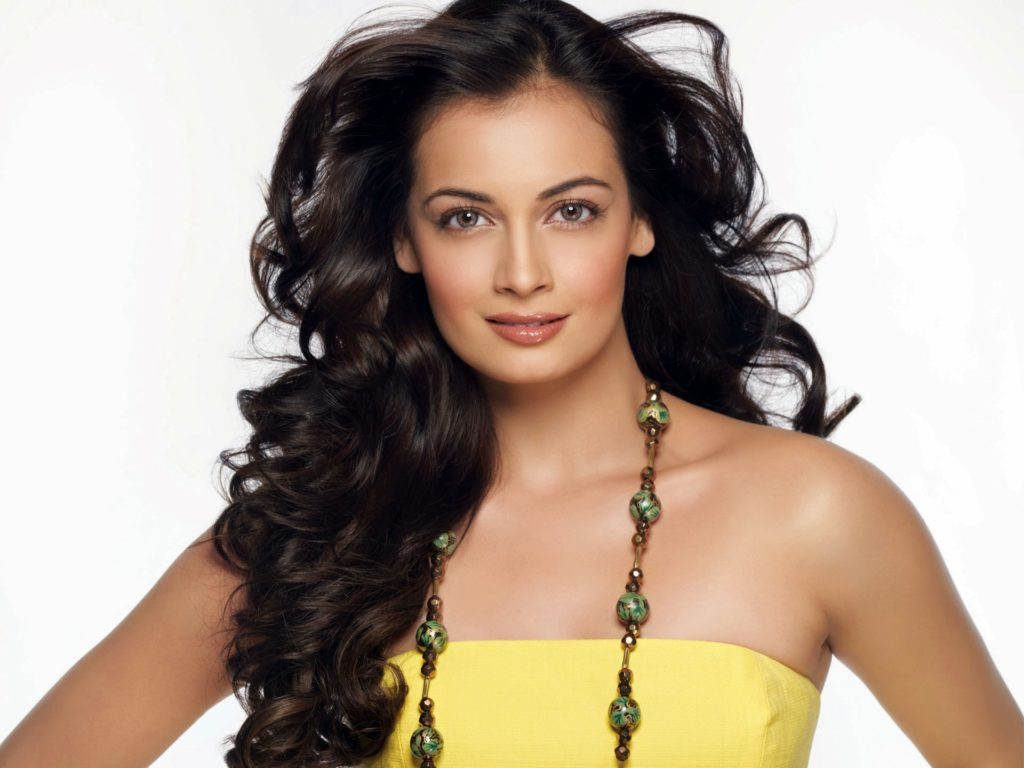 Dia Mirza Charming Wallpapers