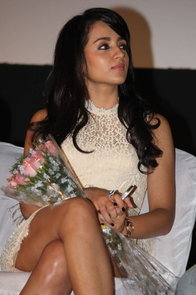Trisha Krishnan Sexy Legs Photoshoots At Award Show
