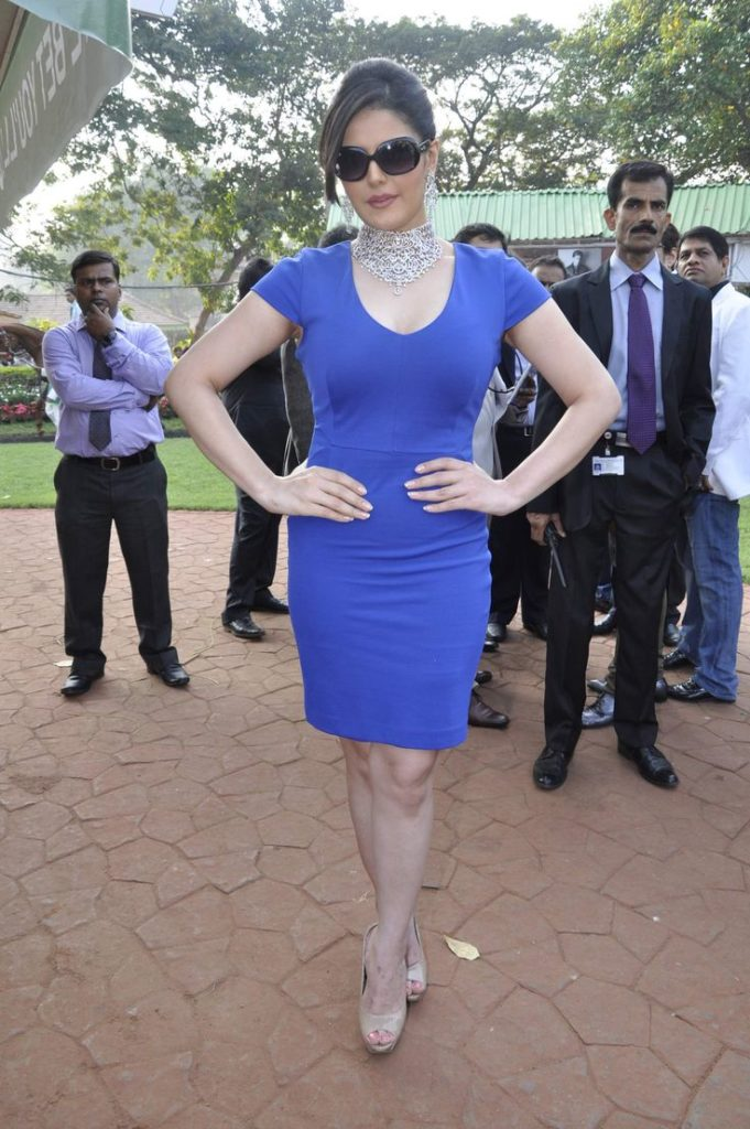 Zarine Khan Hot HD Photos In Bra Panty Images HD