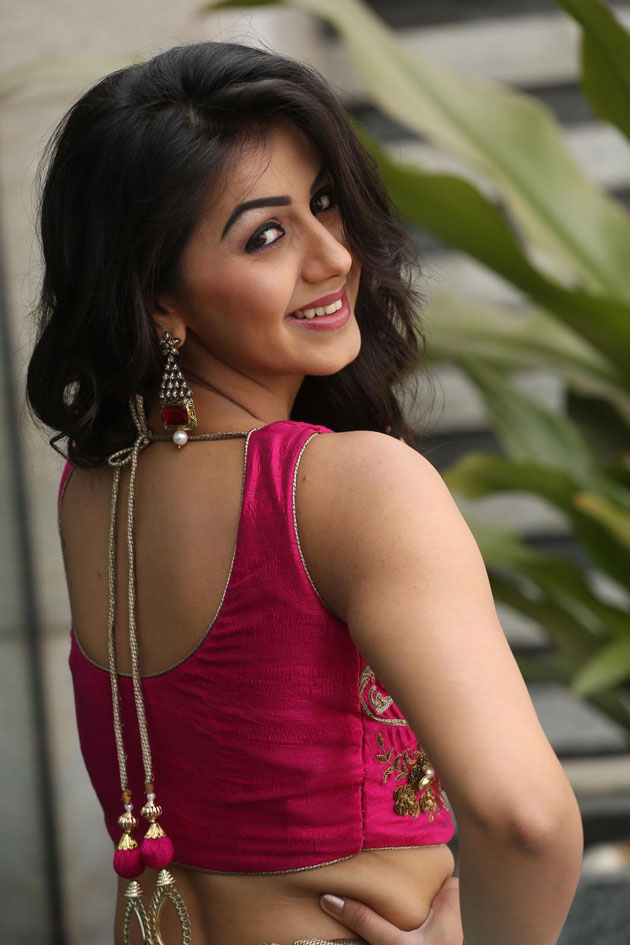 Nikki Galrani In Backless Clothes Images