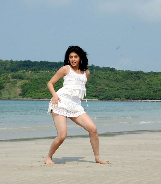 Pranitha Subhash In Bikini Photos