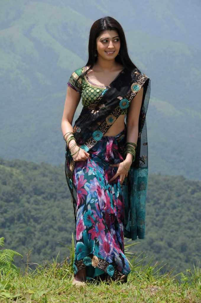 Pranitha Subhash In Saree Photos Gallery