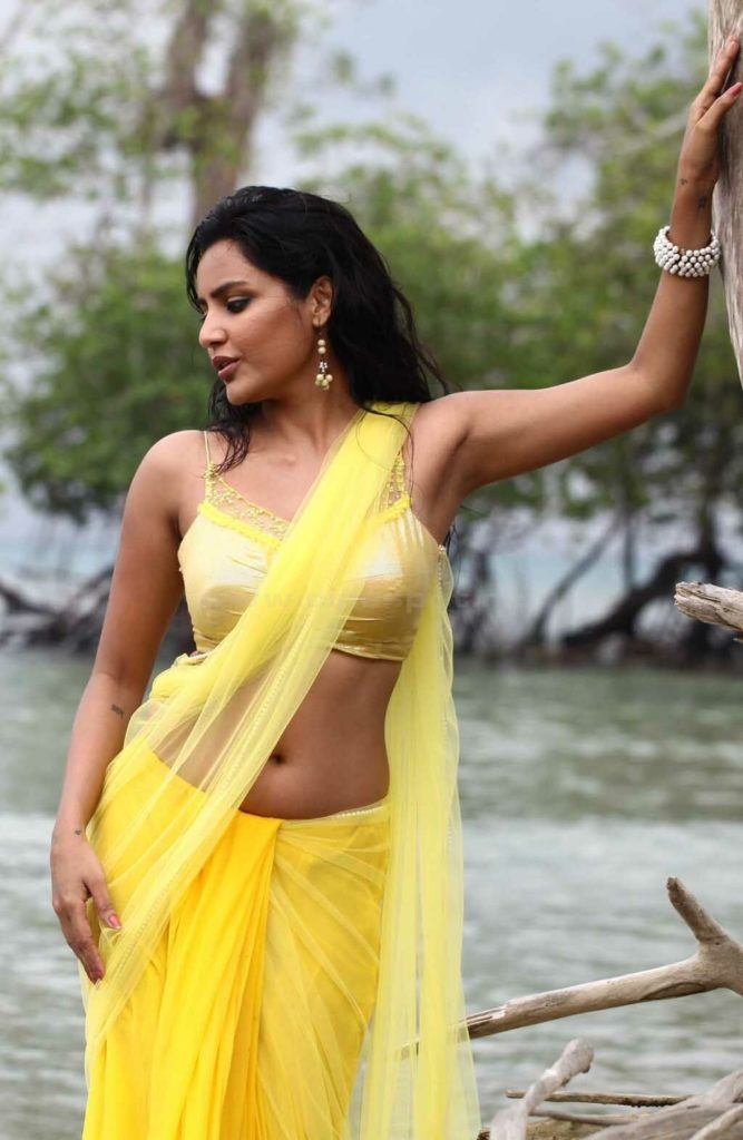 Priya Anand In Saree Bra Pics Gallery