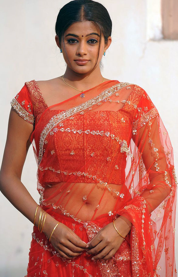 Priyamani Navel Pics In Saree