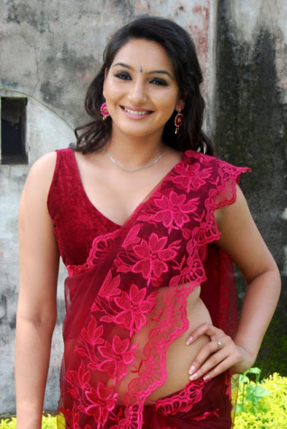 Ragini Dwivedi In Saree Images Gallery