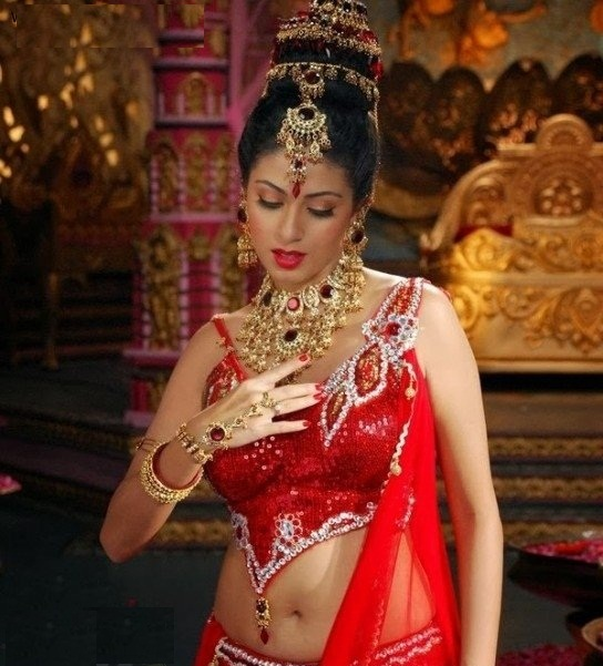 Sadha Navel Photos Gallery